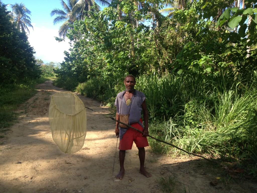 Butterfly poaching honiara